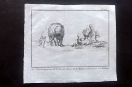 Pluche 1733 Antique Print. Elephant & Camel